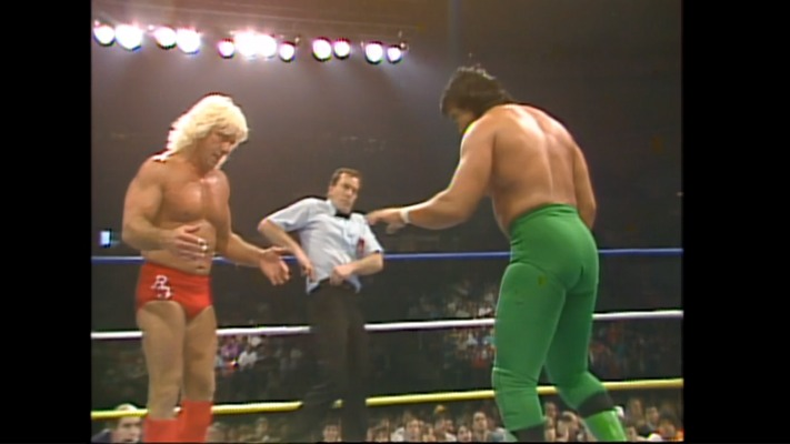 WWE Network Flair Steamboat WWE Network First Impressions: Not Ready For Prime Time